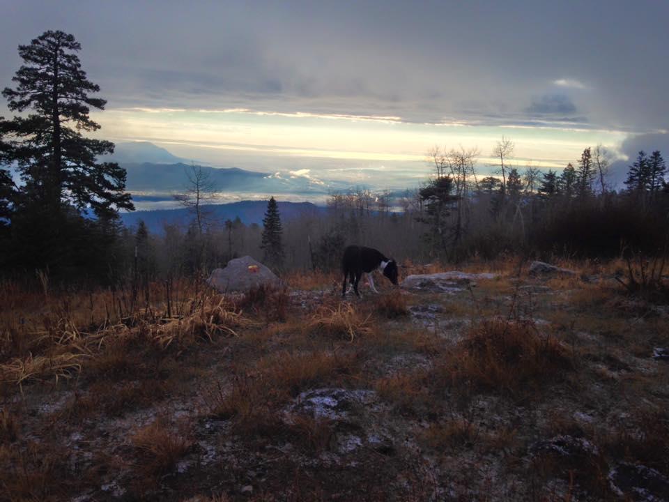 4. 10k Trail2