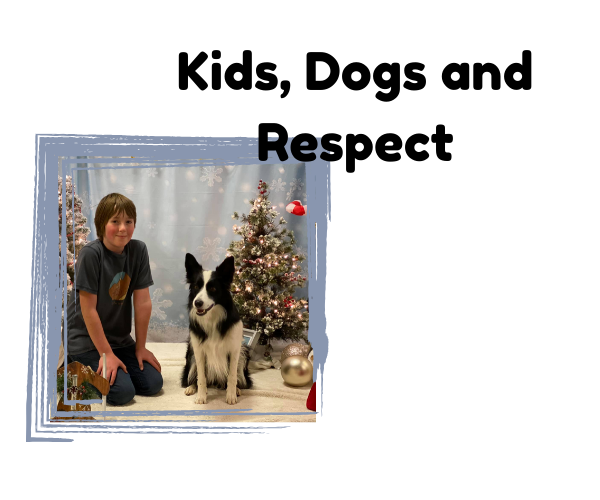 kids dogs respect