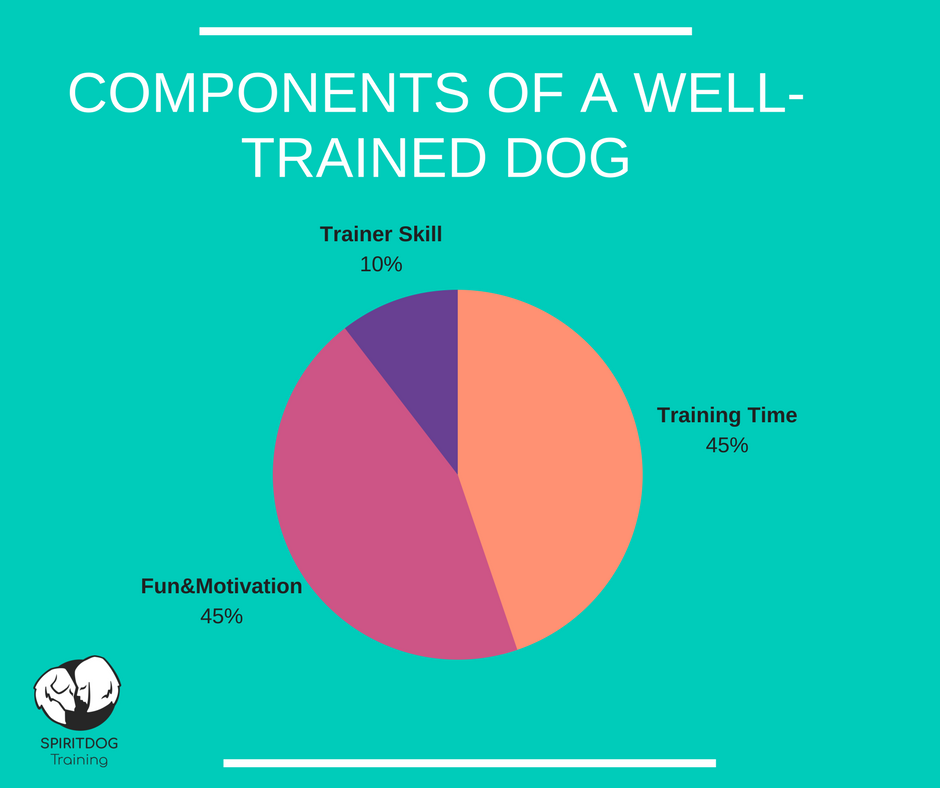 well_trained_dog