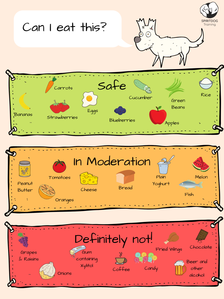 Food safe for dogs