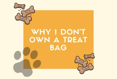 Why I Dont Own A Treat Bag