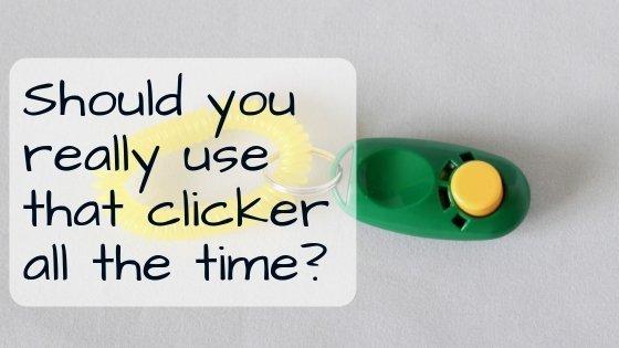 clicker training