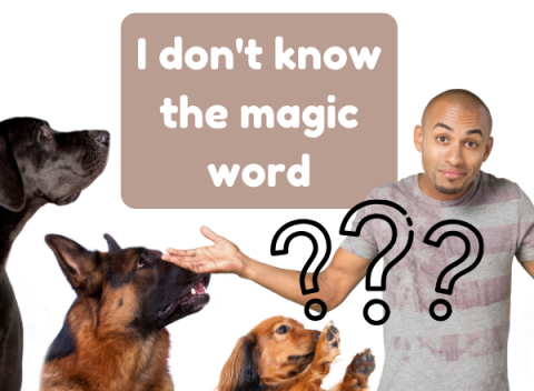 magic word dog