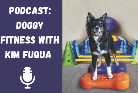Podcast_ Doggy Fitness with Kim Fuqua