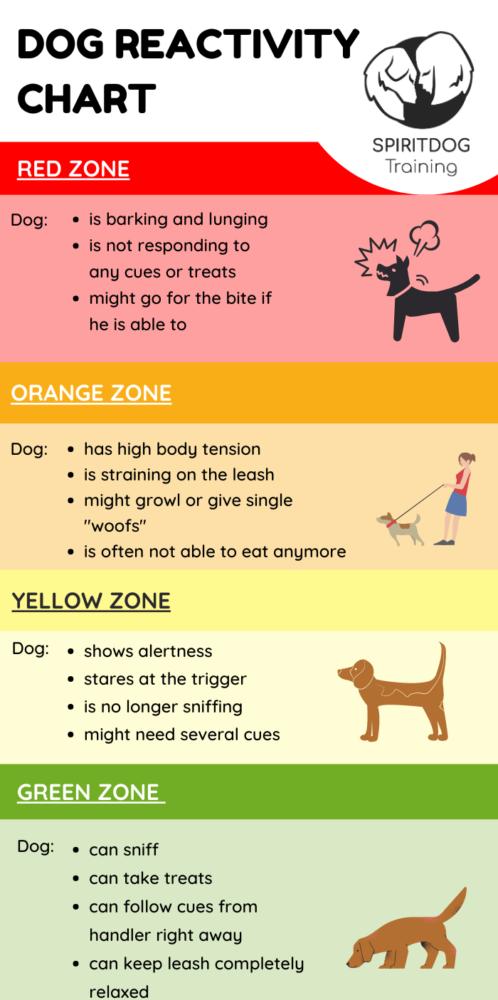 dog reactivity chart