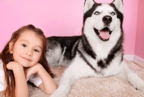 husky and kid
