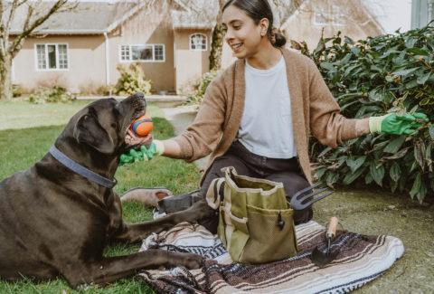 NF Dog Owner Garden Ball